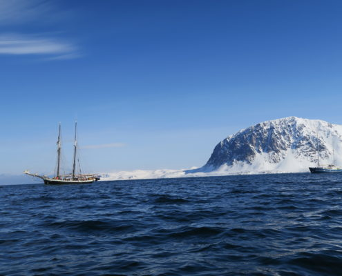 arctic sea, sailing, skiing , guides , guided ski trips, svalbard, skiing