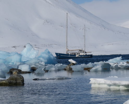 sailing and skiing, svalbard skiing, mountain guides, guided ski trips, arctic circle, longyear, spitsbergen